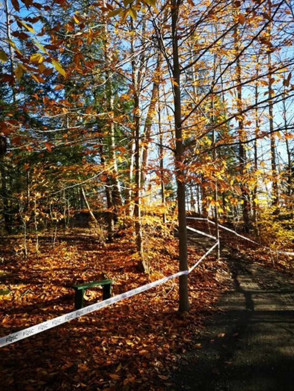 Le parcours de la Mine Capelton est magnifique à ce moment de l'année